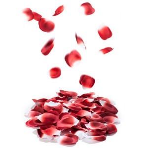 Bonbons Rose Petals Explosion Rosenblade