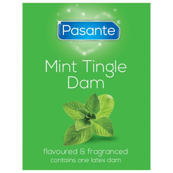 Pasante Latex Dams Slikkelapper