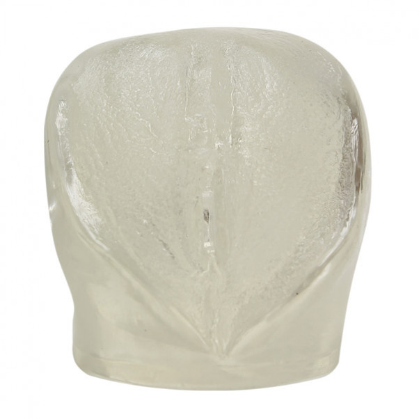 Crystal Clear Transparent Vagina